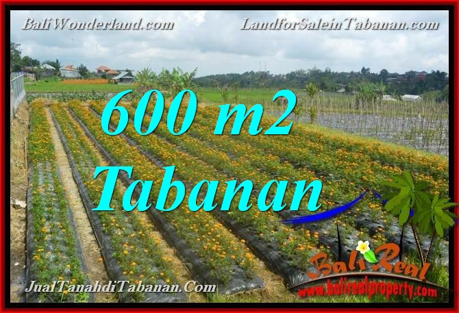 Magnificent PROPERTY 600 m2 LAND IN TABANAN BALI FOR SALE TJTB372