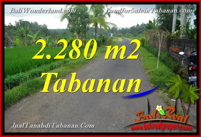 Affordable PROPERTY TABANAN BALI LAND FOR SALE TJTB374