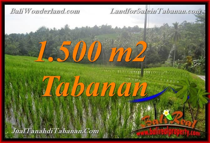 Magnificent PROPERTY 1,500 m2 LAND IN TABANAN BALI FOR SALE TJTB375