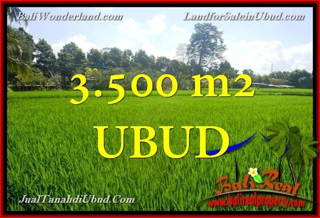 Affordable 3,500 m2 LAND FOR SALE IN UBUD BALI TJUB660