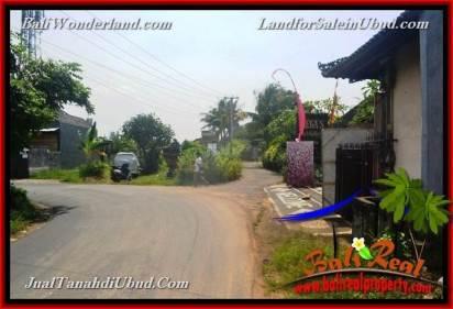 FOR SALE Affordable LAND Near Ubud Center BALI TJUB650