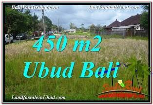 Affordable 450 m2 LAND IN UBUD BALI FOR SALE TJUB671