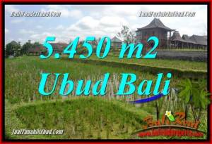 Ubud Bali 5,450 m2 Land for sale TJUB688