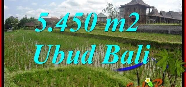 Ubud Bali 5,450 m2 Land for sale TJUB688