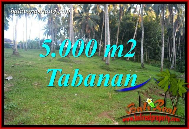 Beautiful 5,000 m2 Land for sale in Tabanan Selemadeg TJTB408