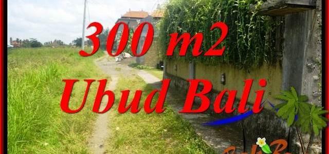 Affordable Property 300 m2 Land sale in Lod Tunduh TJUB687