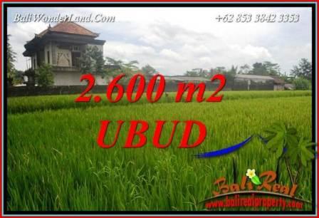 Affordable Property Ubud Bali Land for sale TJUB701