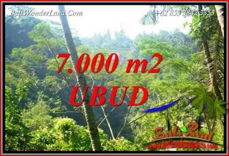 Beautiful Property Land in Ubud Bali for sale TJUB714