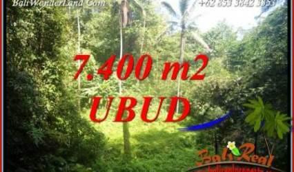 Affordable Property 7,700 m2 Land in Ubud Tegalalang for sale TJUB734