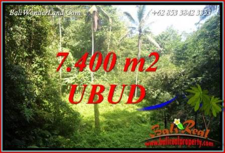 Ubud Bali 7,700 m2 Land for sale TJUB734
