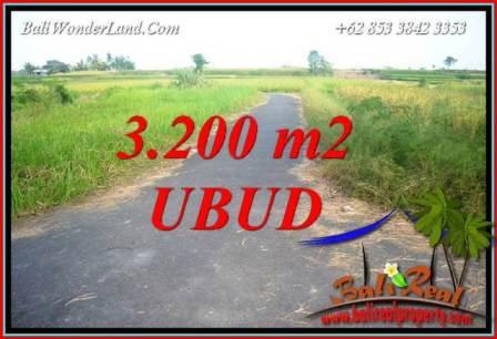 FOR sale Beautiful Property 3,200 m2 Land in Ubud Singapadu Bali TJUB736