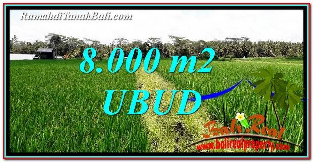 Exotic 8,000 m2 LAND SALE IN UBUD BALI TJUB763