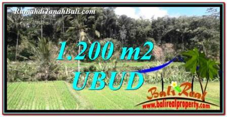 Beautiful LAND FOR SALE IN UBUD TJUB746