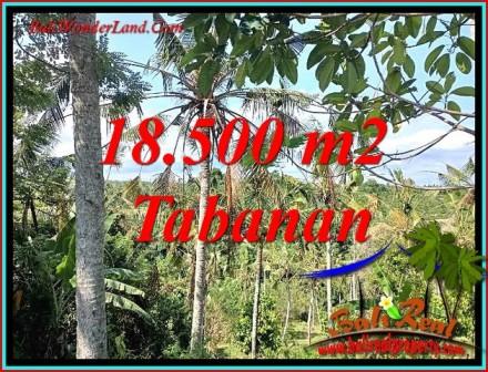 Beautiful PROPERTY 18,500 m2 LAND FOR SALE IN TABANAN TJTB487