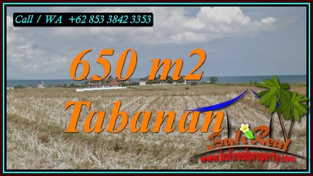 Cheap property LAND FOR SALE IN SELEMADEG TABANAN TJTB453