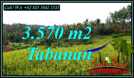 Affordable PROPERTY LAND FOR SALE IN SELEMADEG TIMUR TJTB482