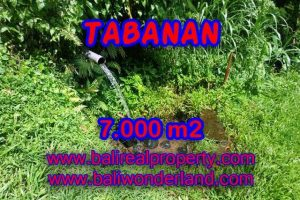 Exotic Property for sale in Bali, LAND FOR SALE IN TABANAN Bali – TJTB089