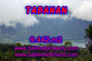 Stunning Property for sale in Bali land sale in Tabanan Bali – TJTB081