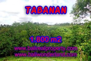 Spectacular Property in Bali, land for sale in Tabanan Penebel – TJTB088