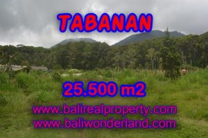 Attractive Property for sale in Bali, land for sale in Tabanan  – TJTB085