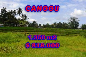 Land for sale in Bali, Extraordinary river view in Canggu Pererenan – TJCG114