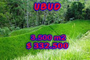 Land for sale in Ubud Bali 3.500 sqm in Ubud Tampak siring