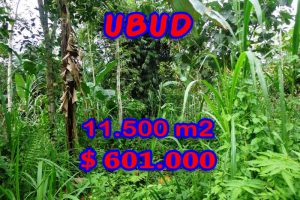 Land for sale in Bali, spectacular view in Ubud Bali – TJUB260