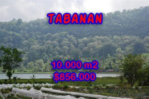 Spectacular Land for sale in Bali, lake view in Tabanan Bedugul Bali – TJTB059