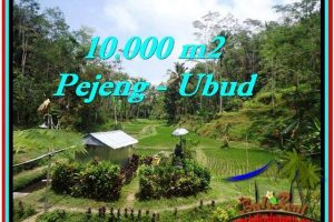 Exotic PROPERTY LAND IN UBUD FOR SALE TJUB519