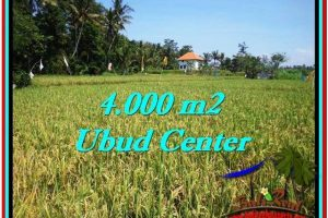 Exotic PROPERTY 4,000 m2 LAND FOR SALE IN Sentral Ubud TJUB527