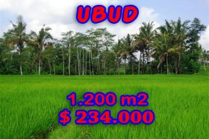 Land for sale in Ubud Bali 1.200 sqm in Ubud Tegalalang