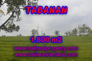 Land for sale in Bali, impressive view in SOKA TABANAN – TJTB083