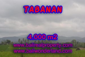 Land for sale in Bali, Magnificent view in TABANAN BARAT Bali – TJTB084