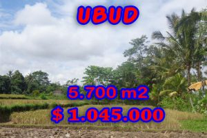 Land in Bali for sale, Magnificent view in Ubud Pejeng – TJUB279
