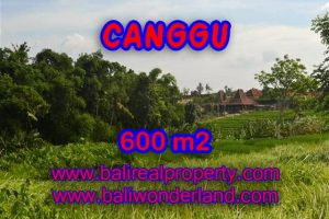 Land in Canggu Bali for sale, nice view in Canggu Bali – TJCG130