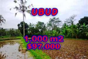 Bali Property for sale, Stunning land for sale in Ubud Bali  – 1.000 sqm @ $ 97