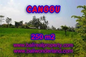 Land in Canggu Bali for sale, Outstanding view in Pererenan – TJCG135