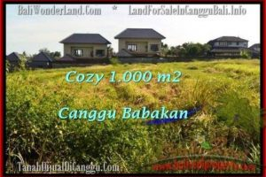 Affordable PROPERTY 1,000 m2 LAND IN CANGGU FOR SALE TJCG178