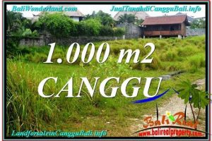 Exotic PROPERTY 1,000 m2 LAND SALE IN CANGGU TJCG214