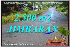 Magnificent 2,500 m2 LAND SALE IN Jimbaran Ungasan TJJI118