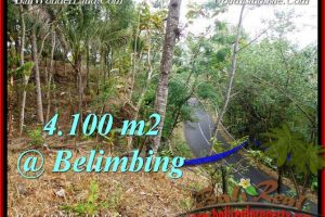 Affordable Tabanan Selemadeg BALI LAND FOR SALE TJTB218