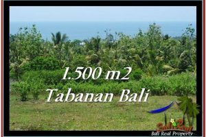 Affordable PROPERTY LAND FOR SALE IN TABANAN TJTB234
