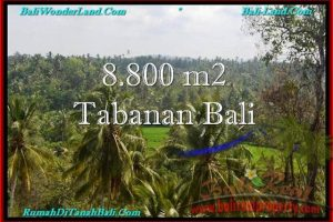 FOR SALE Exotic PROPERTY 8,800 m2 LAND IN TABANAN BALI TJTB238