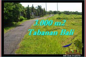 Affordable PROPERTY 3,000 m2 LAND SALE IN TABANAN BALI TJTB246