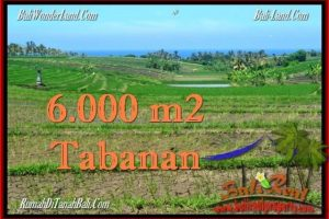 FOR SALE Exotic PROPERTY 6,000 m2 LAND IN TABANAN BALI TJTB268