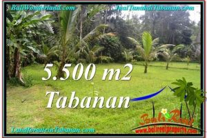 Beautiful PROPERTY TABANAN LAND FOR SALE TJTB295
