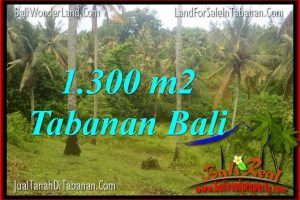 Affordable PROPERTY LAND IN Tabanan Selemadeg BALI FOR SALE TJTB314