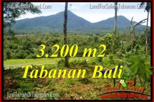Beautiful PROPERTY TABANAN BALI 3,200 m2 LAND FOR SALE TJTB319