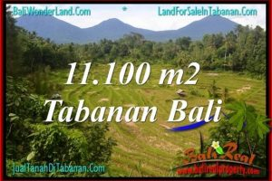 Exotic PROPERTY 11,100 m2 LAND SALE IN Tabanan Penebel BALI TJTB320