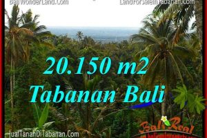Affordable PROPERTY 20,150 m2 LAND FOR SALE IN TABANAN TJTB322